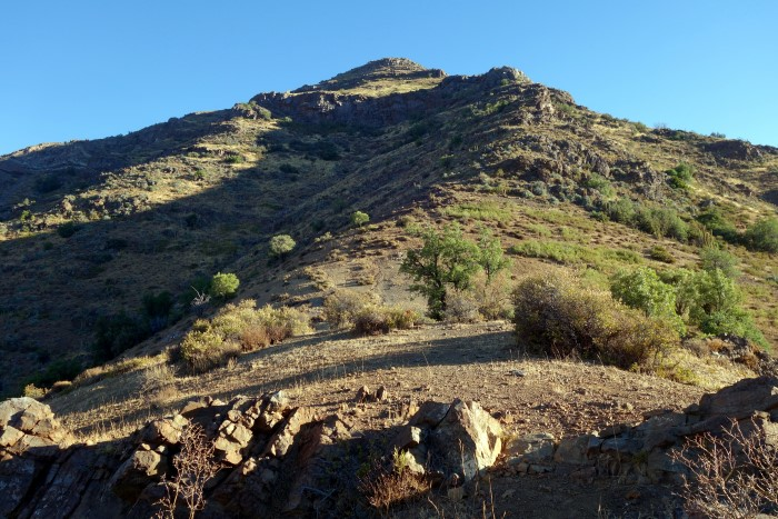 Morro Buitrero